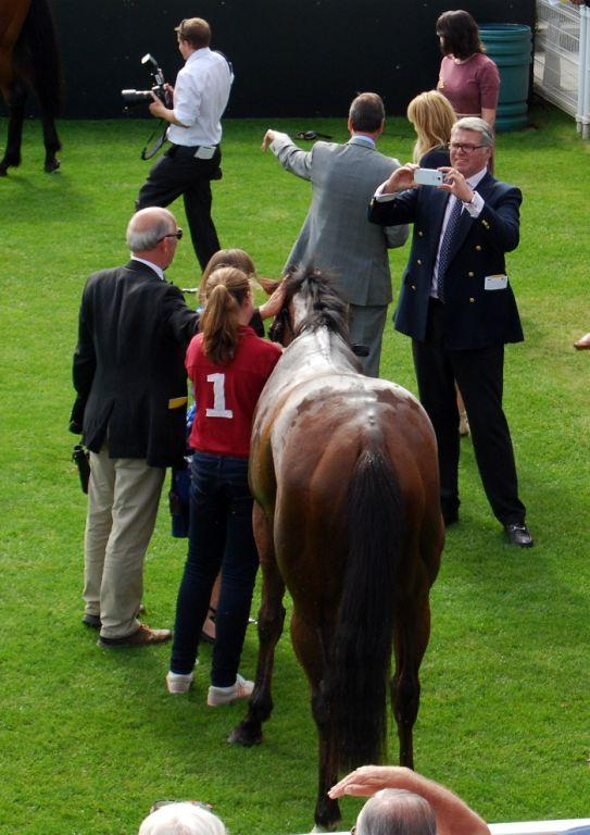 Medal Of Valour at Goodwood